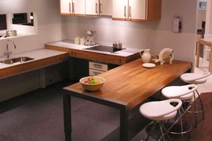 Disabled Kitchen Sinks And Taps. Accessible Kitchen Cooking Appliances